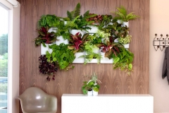 Advantages of Building an Indoor Vertical Garden Picture