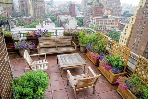 Urban Garden Design Ideas Picture