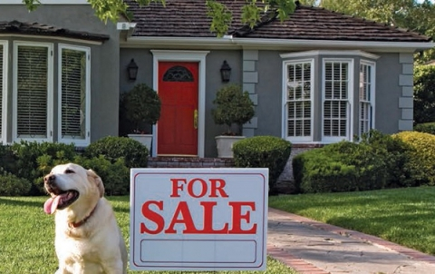 Easing a home sale process - your must-knows