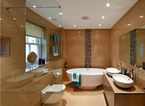 Modern Bathroom Decors Picture